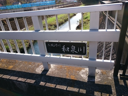 和泉川1.JPG