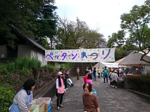 ペッタン祭り−1.JPG